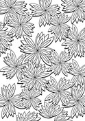Floral Pattern 14