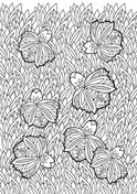 Floral Pattern 13