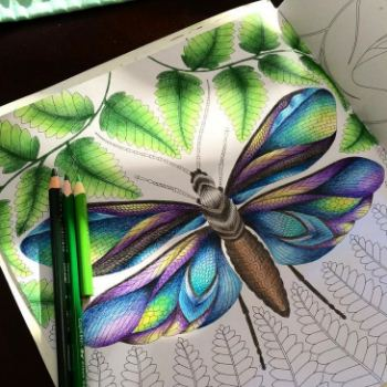 Adult coloring techniques and tutorials coloring flowers fairy with Chameleon pens by Sophie