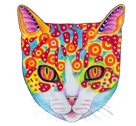 How To Draw A Colorful Cosmic Cat