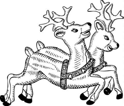 Santa's Reindeers Christmas