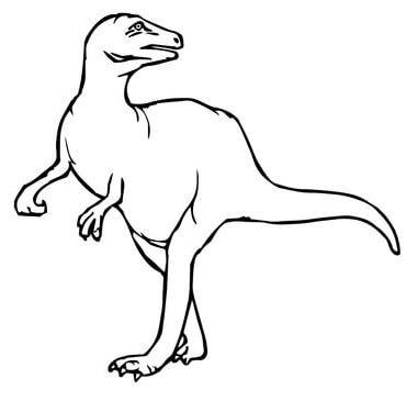 Maiasaura Dinosaurs