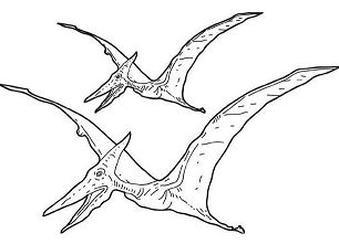 Tarbosaurus Pterosaur
