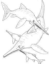 Ichthyosauria BW