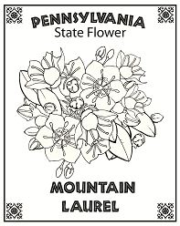 Pennsylvania State Flower Coloring Page