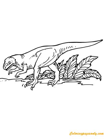 Allosaurus Carnivorous Dinosaurs Coloring Page