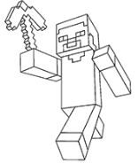 Minecraft Steve Picture