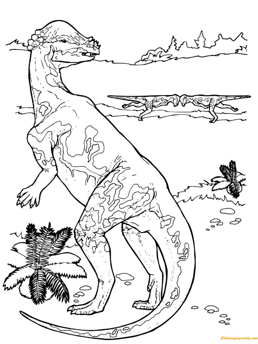 Pachycephalosaurus Cretaceous Period Dinosaur Coloring Page