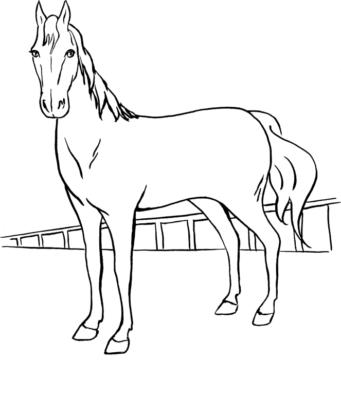 A Barbie Horse with horsehair Coloring Page