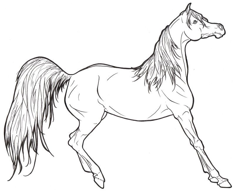 A Barbie Horse