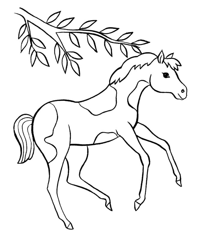 A foal of Barbie Horse Coloring Page