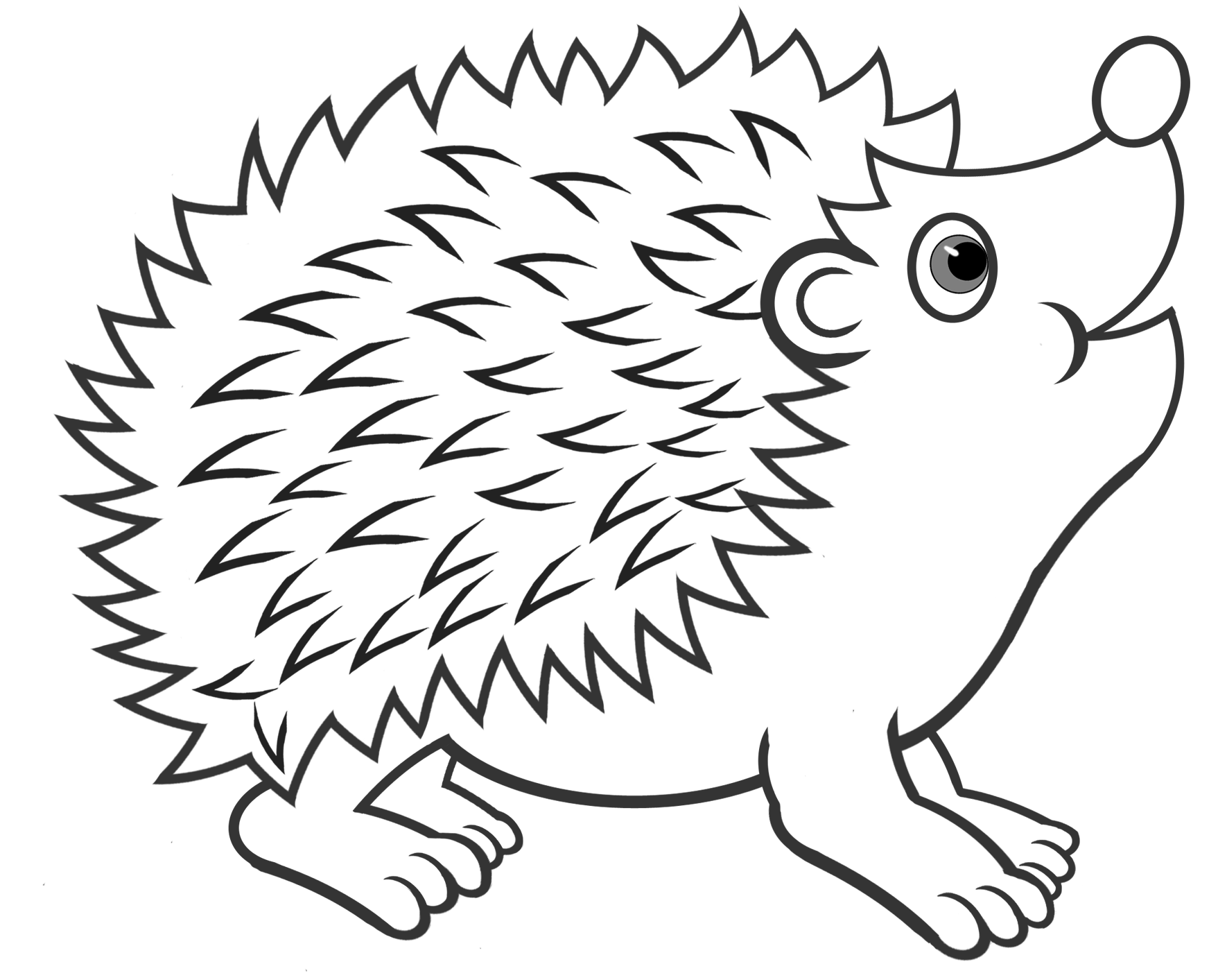 A Hedgehog Coloring Page