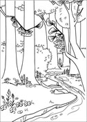 A River In The Forest Coloring Page