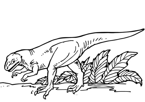 Allosaurus baby find the food Coloring Page