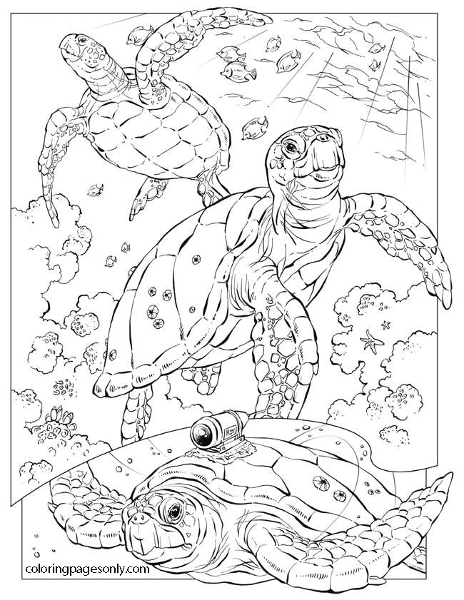 Ancient turtles under the ocean Coloring Page