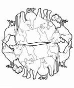 Animal Mandala 3