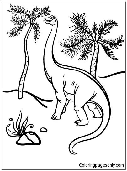 Apatosaurus 3 Coloring Page
