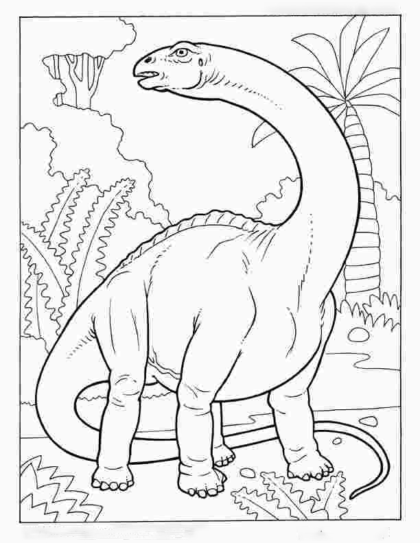 Apatosaurus Dinosaur was a massive herbivore that weighed as much as five adult elephants Coloring Page