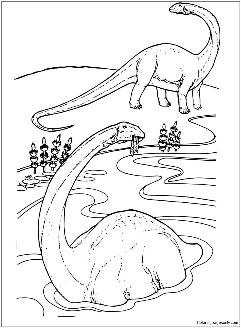 Apatosaurus From Dinosaur Coloring Page