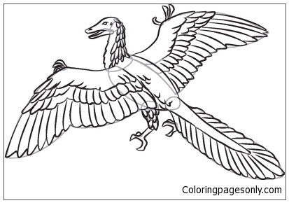 Archaeopteryx  Coloring Page