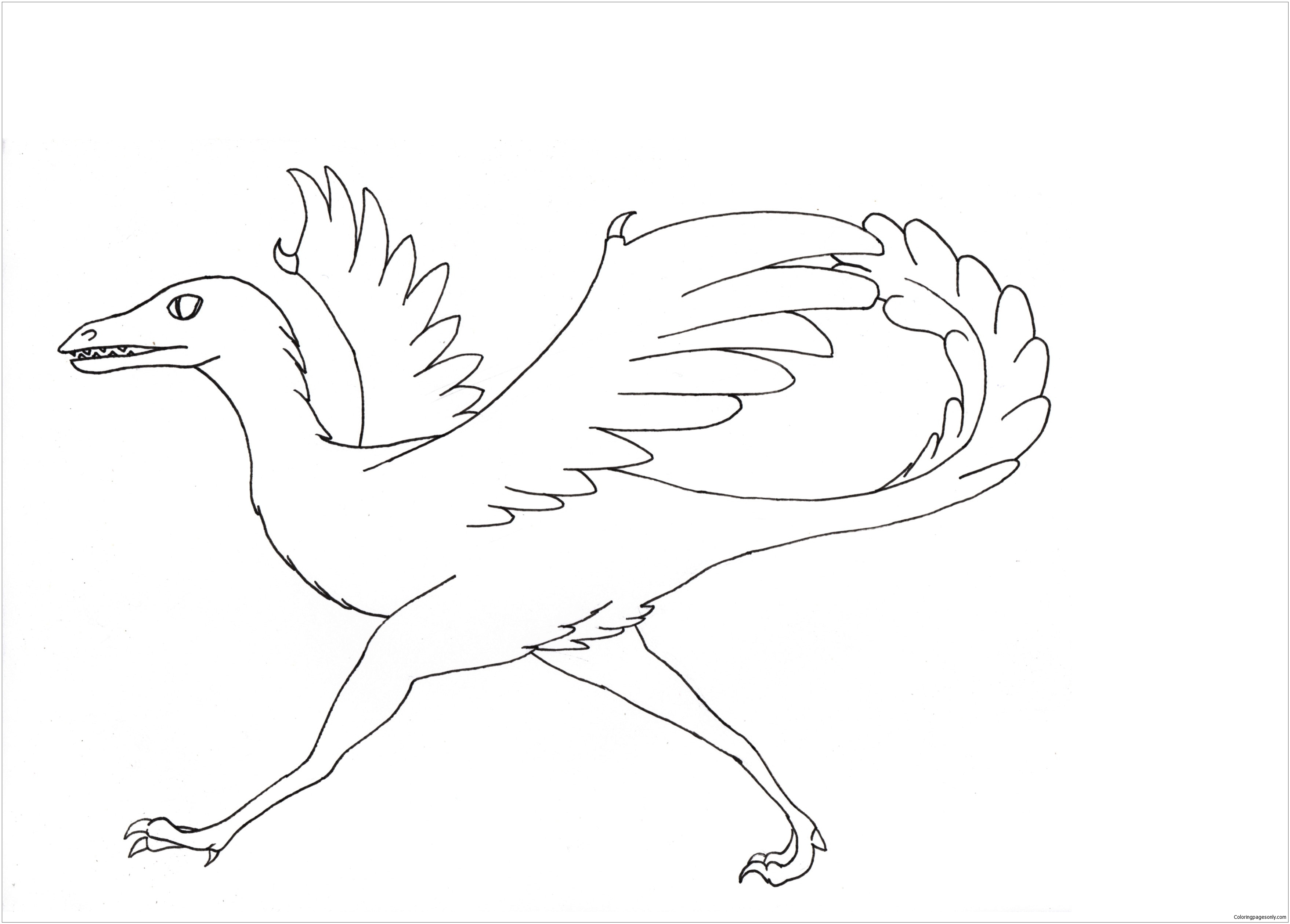 Archaeopteryx Dinosaur 1 Coloring Page