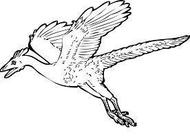 Archaeopteryx Dinosaur 2 Coloring Page