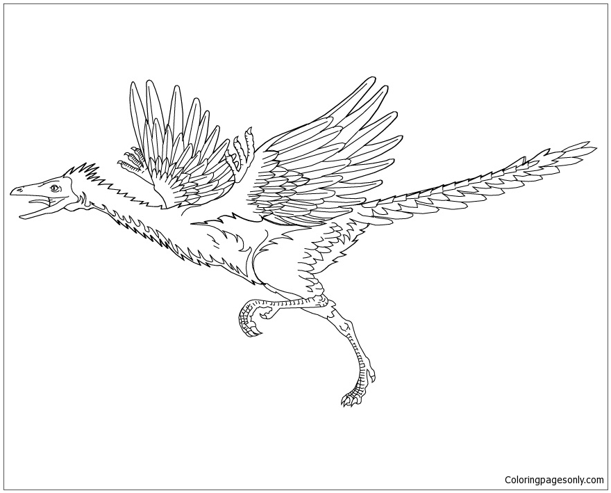 microraptor coloring pages - photo#29
