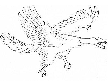 Archaeopteryx Dinosaurus 3