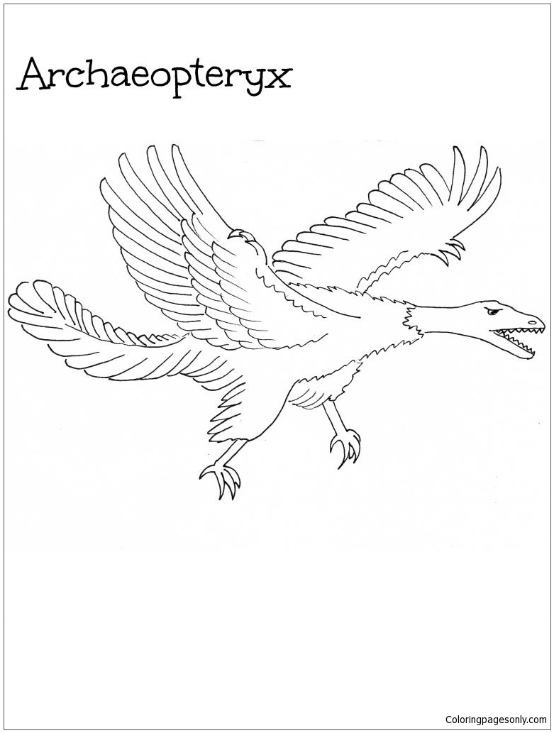 Archaeopteryx Dinosaurus 3  Coloring Page