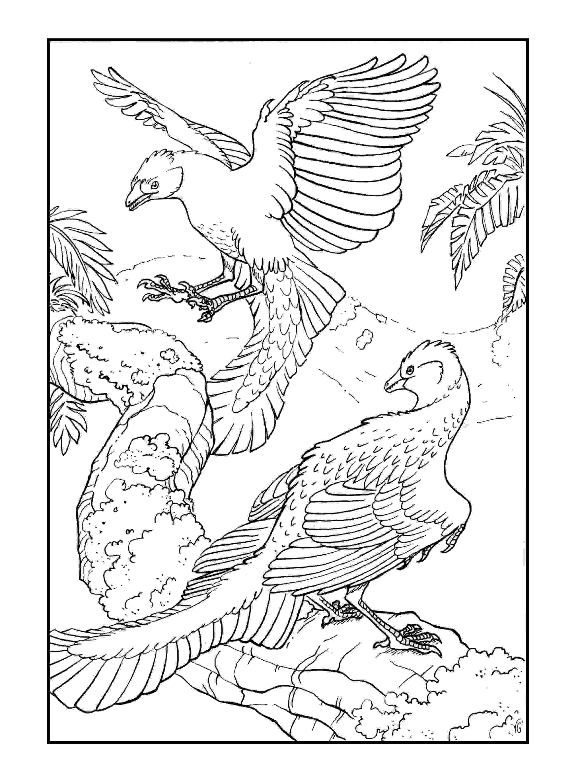 Archaeopteryx lithographica Coloring Page