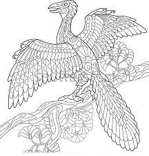 Archeopteryx 3 Coloring Page