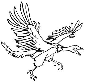 Archeopteryx Dinosaur 4 Coloring Page