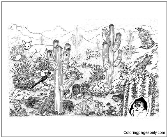 Desert Coloring Pages Arizona Desert Coloring Page  Free Coloring Pages Online