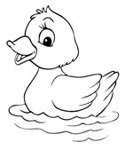 Baby Duck Animal Coloring Page
