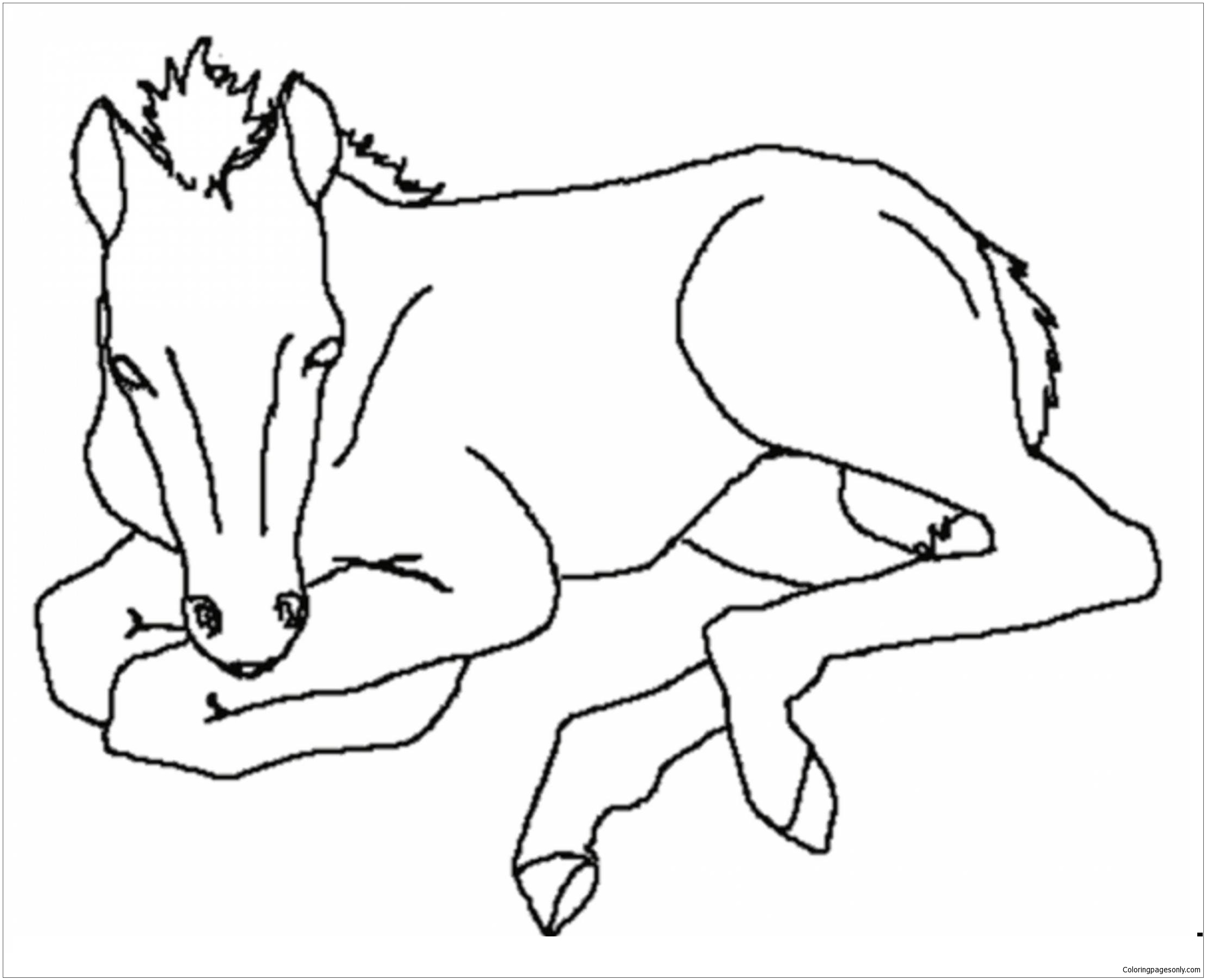 4100 Coloring Pages Of Cute Baby Horses Download Free Images