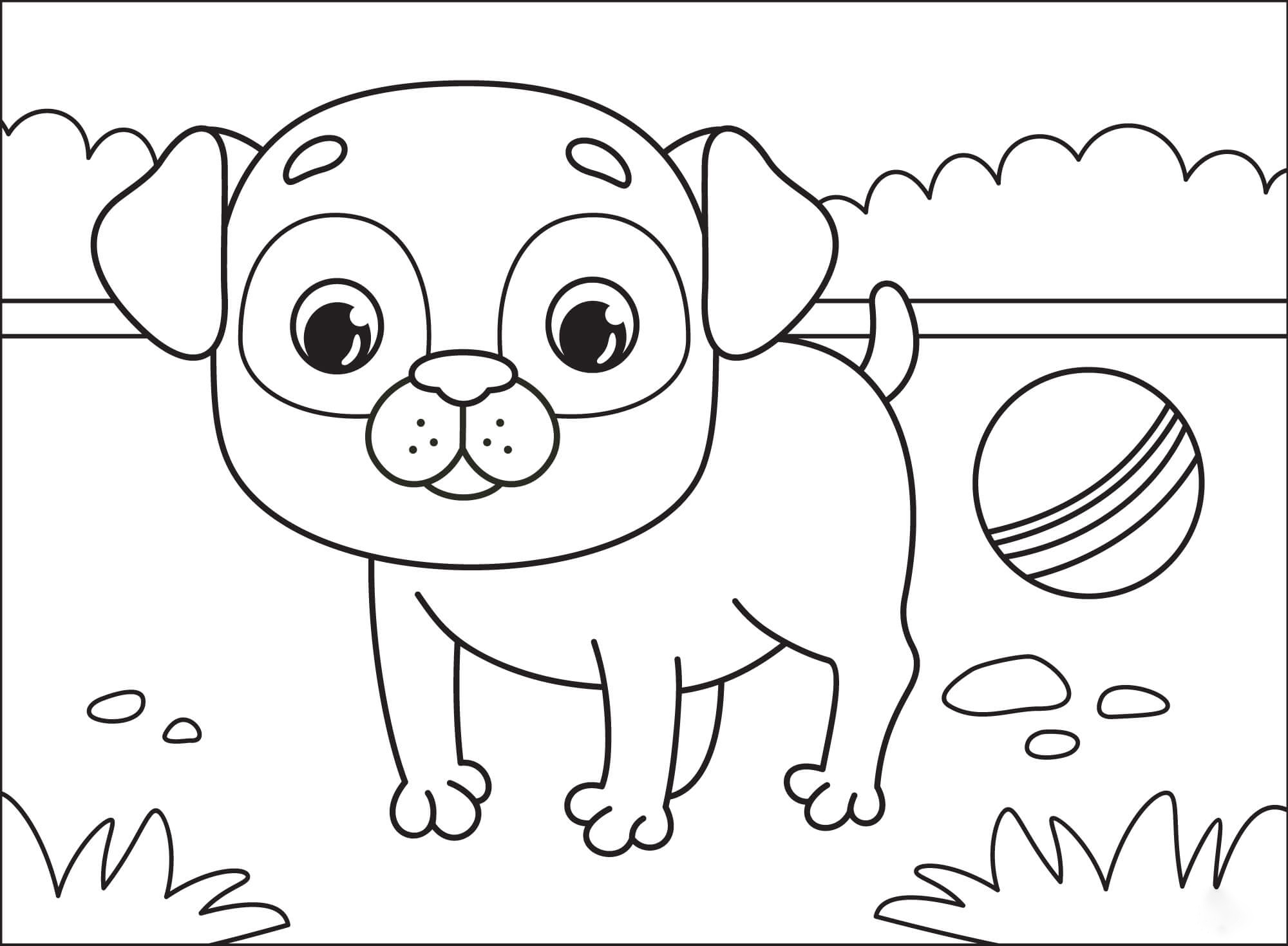 Baby pug Coloring Page