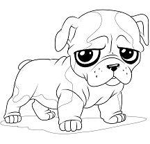 Baby Puppy Bulldog