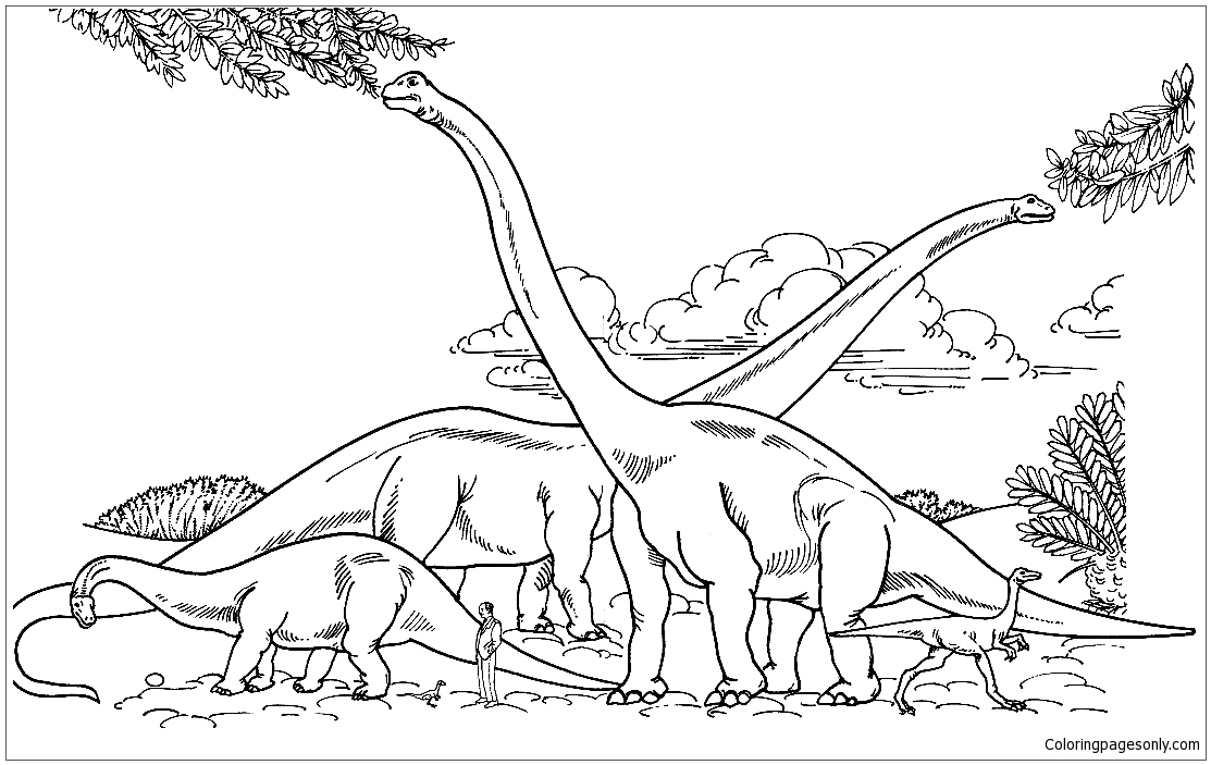 Barosaurus Hypselosaurus Brachiosaurus And Gallimimus Comparison With Human Coloring Pages Dinosaurs Coloring Pages Coloring Pages For Kids And Adults