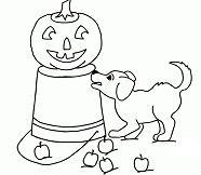 Beagle Puppy and Jack-O-Lantern