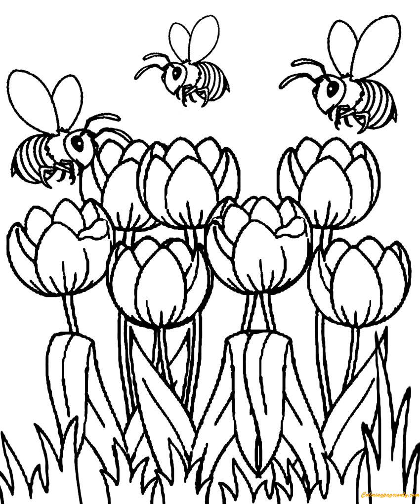 Beautiful Spring Tulip Coloring Page