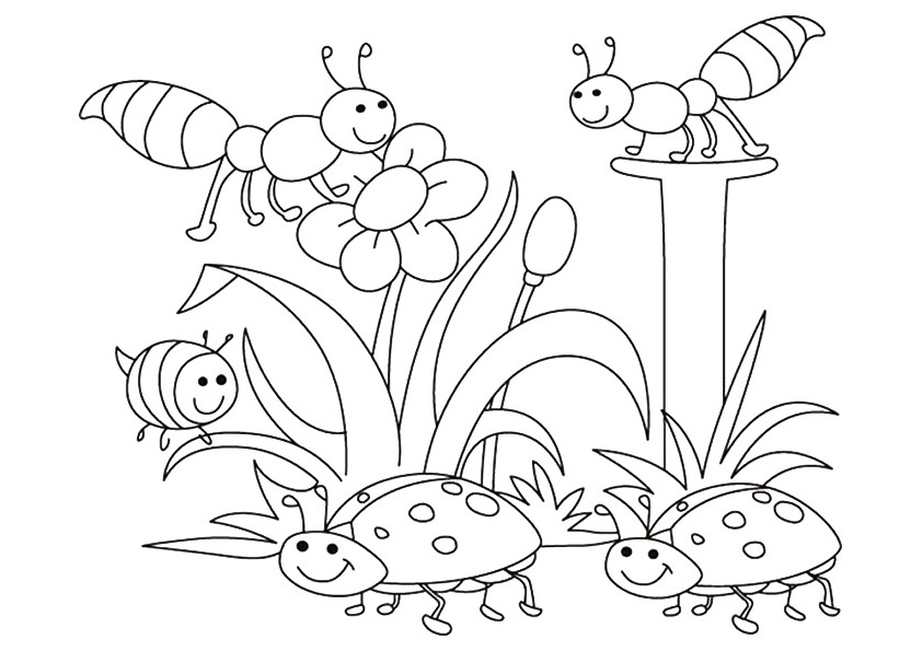 Bees and Beetles in the Spring Coloring Page
