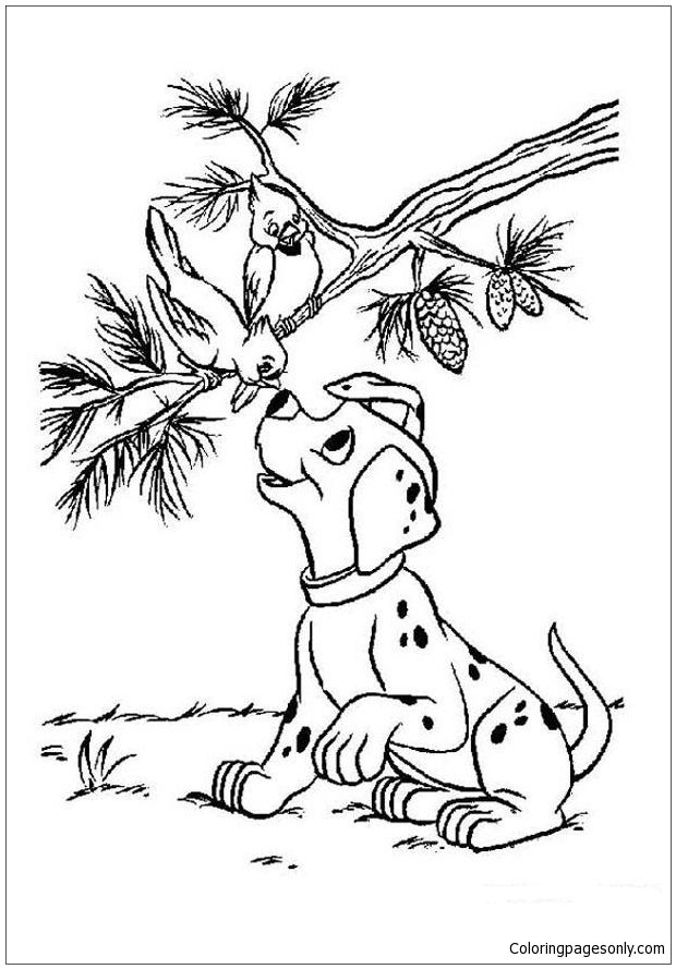 Birds And Puppy Coloring Page