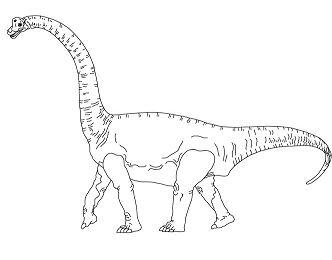 Brachiosaurus 1 Dinosaur