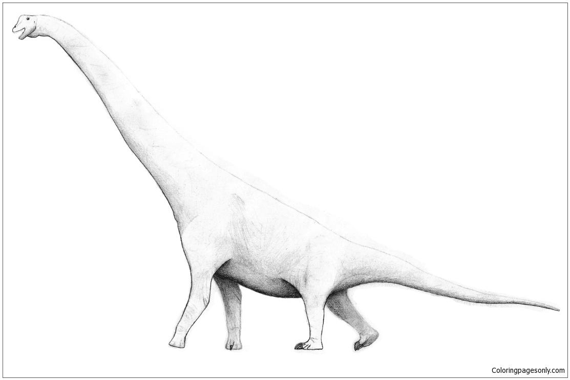 Brachiosaurus 2 Coloring Page