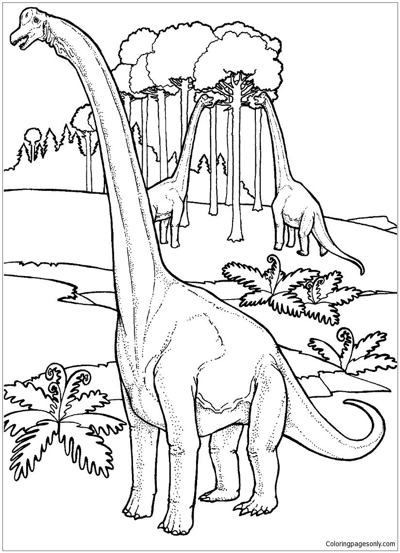 Brachiosauruses Near Tree Coloring Page