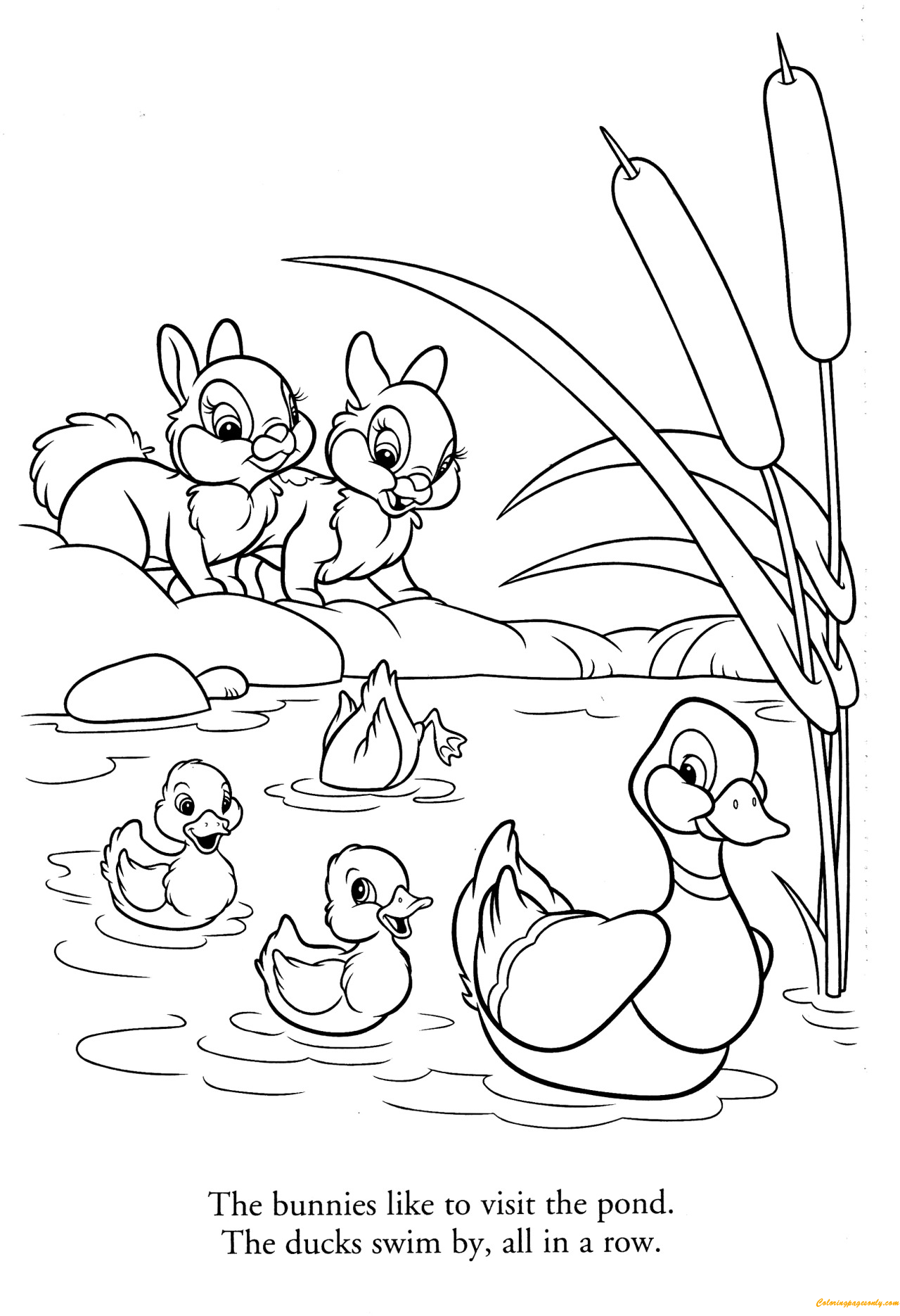 Bunnies And Ducks Coloring Pages
