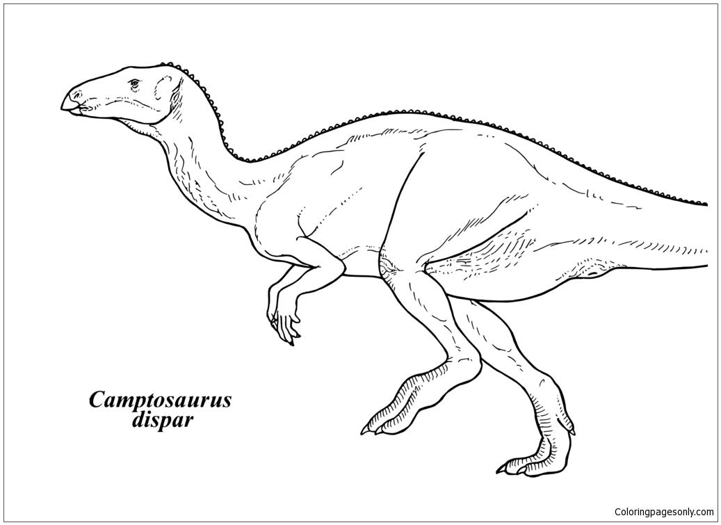 Camptosaurus Dispar Coloring Page