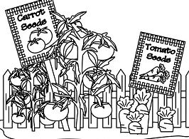 Carrot and Tomato Garden Coloring Page