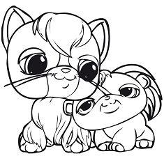 Cat And Puppy Cute