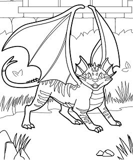 Cat Dragon Coloring Page